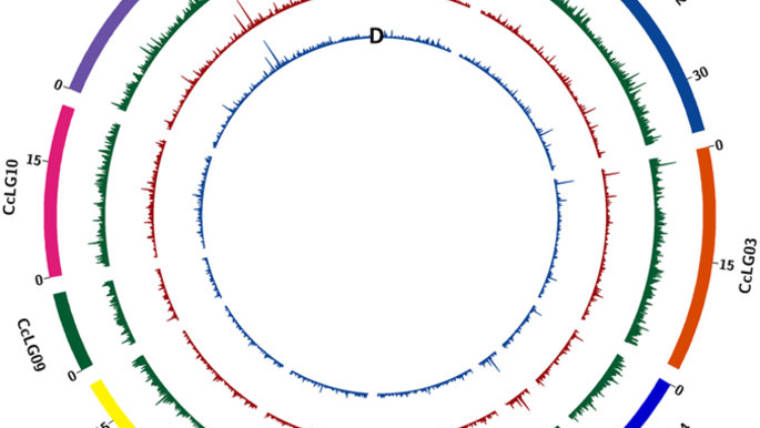Genotyping-by-sequencing of three mapping populations for identification…