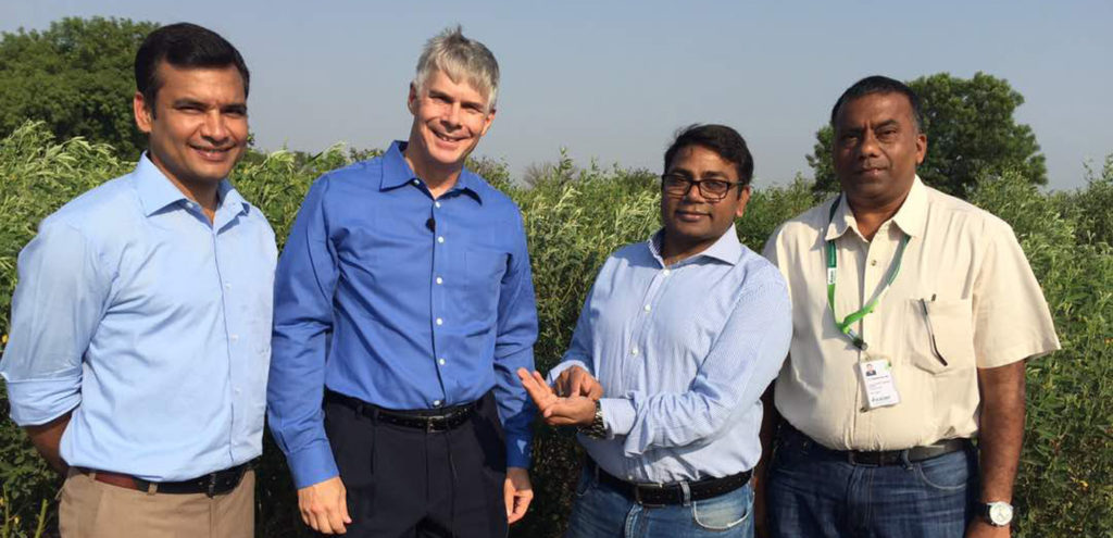 Breakthrough: Pigeonpea genome re-sequencing will lead to superior varieties and make the pulse more affordable