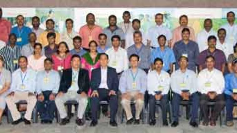 Molecular markers for rapid crop improvement
