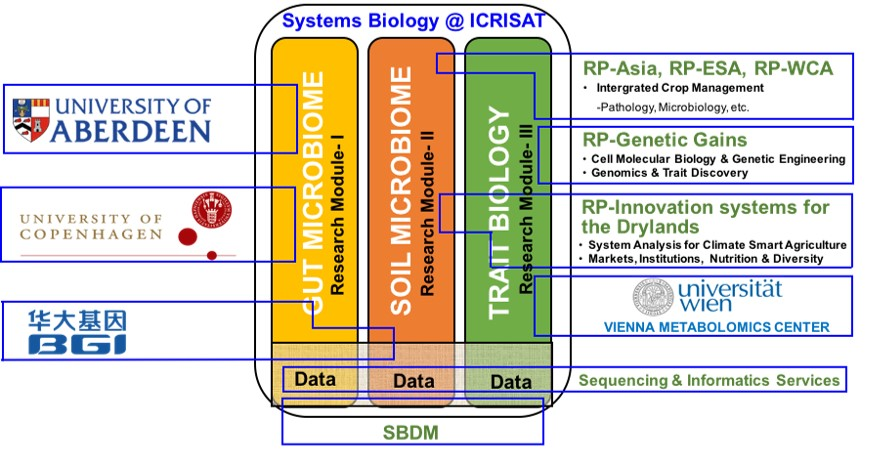 Systems-Biology_updated.jpg