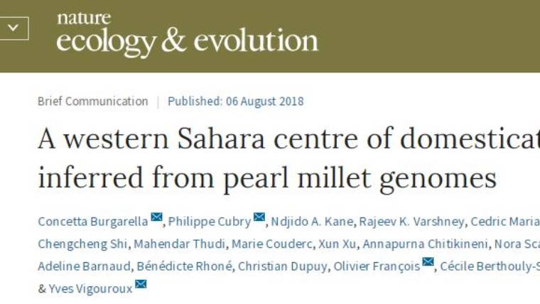 A western Sahara centre of domestication inferred from pearl millet genomes