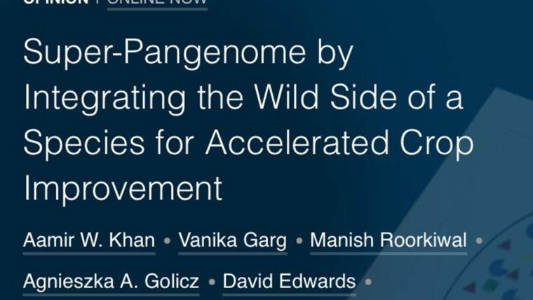 Super-Pangenome by Integrating the Wild Side of a Species for Accelerated Crop Improvement